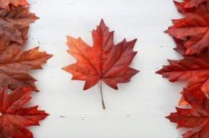 5 raisons d'aller au Canada