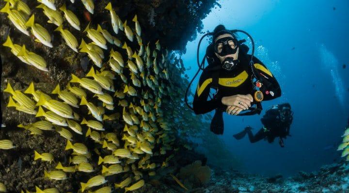 Meilleurs endroits pour faire de la plongée