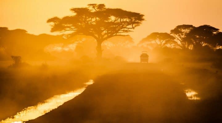 Conseils pour organiser sa valise pour un safari en Afrique